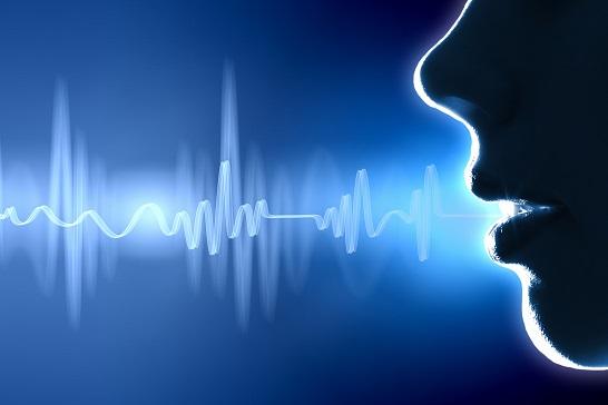 音声のみのオンライン英会話