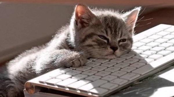 オンライン英会話のレッスンで疲れる理由